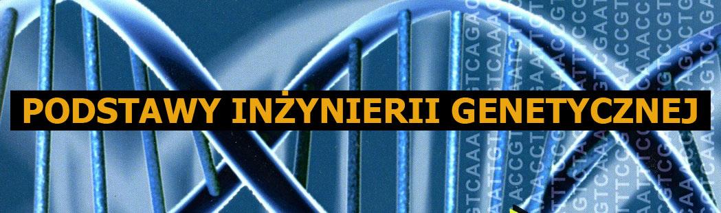 Podstawy inżynierii genetycznej